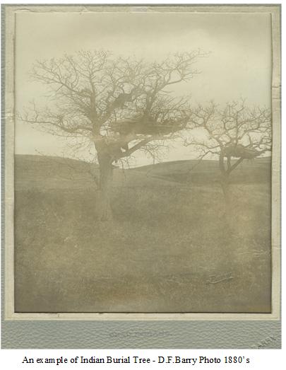 customs82-burial-tree