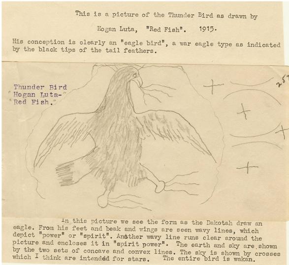 little-story-no-10-thunderbird