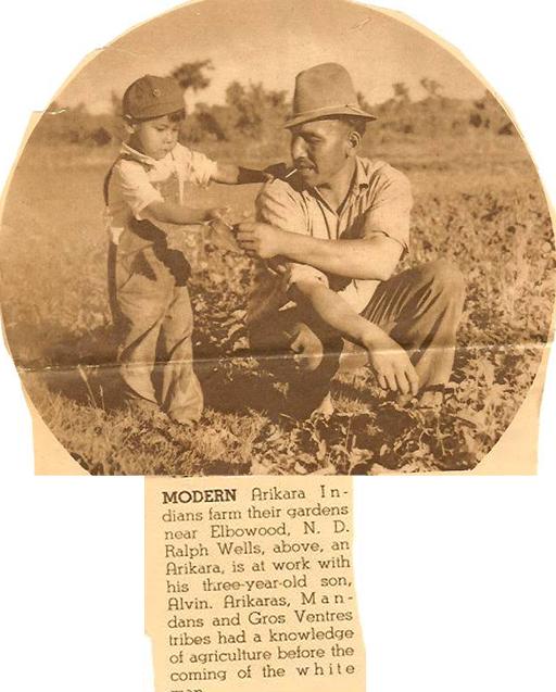 minn-p29b-farmer