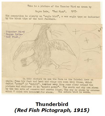 shields-p12-thunderbird-by-red-fish